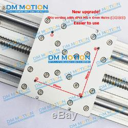 800mm Effective stroke SFU1610 Linear Stages Module with NEMA34 Motor bracket
